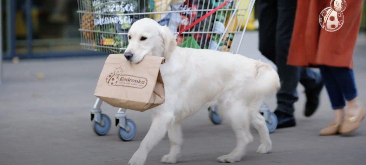 Reklama promowała zostawianie psa pod sklepem. Biedronka nokautuje skargę na sklep