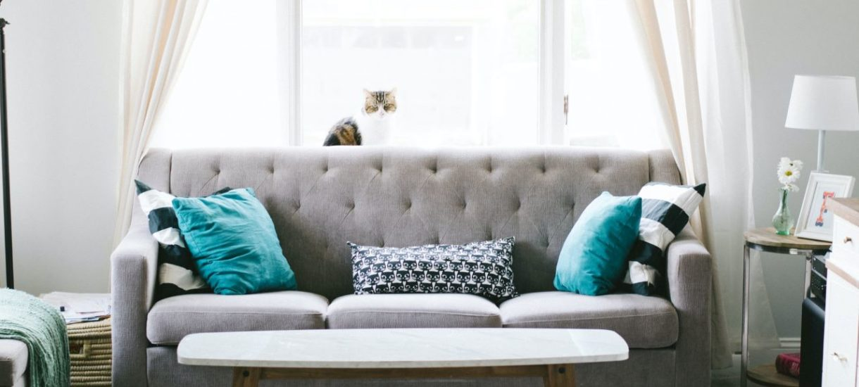 Zara Home wykorzystała zdjęcie Kasi Tusk do promocji swoich produktów. Naruszenie praw autorskich może kosztować sklep znacznie więcej niż utratę wizerunku