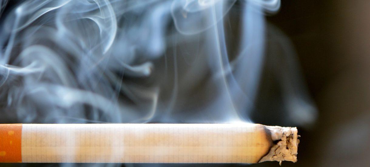 Podatki na tytoń do podgrzewaczy już teraz są zbliżone do papierosów. Federacja Przedsiębiorców Polskich punktuje prof. Modzelewskiego