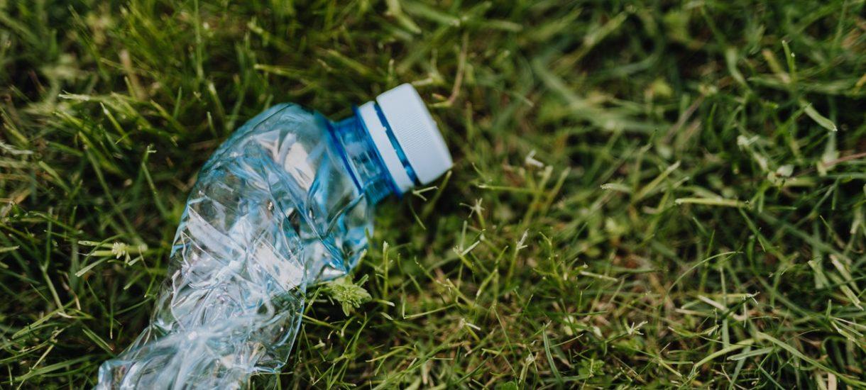 Wyższe grzywny za rzucenie niedopałka papierosa czy wyrzucenie worka śmieci w lesie. Dodatkowa kara: sprzątanie