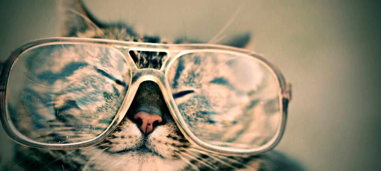 Pracodawca musi zapewnić okulary dla pracownika podczas pracy zdalnej