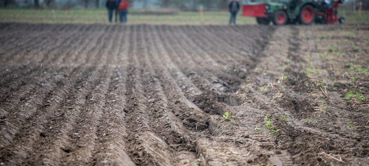 Podatek od wartości gruntu może być alternatywą dla podatku katastralnego
