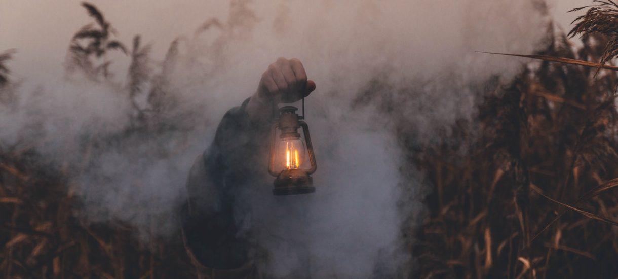 To może być koniec zaśmiecania lasów, przestrzeni publicznych, wypalania łąk i przestępstw przeciw środowisku. Nadchodzą drakońskie kary