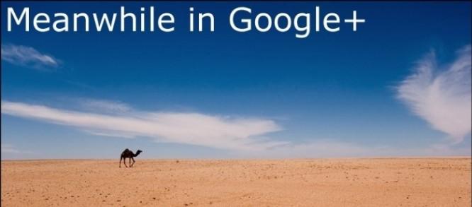 Czy Google+ jest niewypałem?