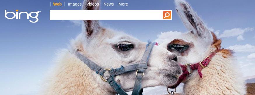 Nowy, zintegrowany ze społecznościami Bing jest świetny. Podobno.