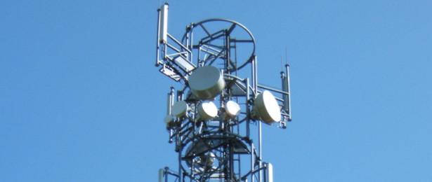 Możliwe, że zwycięzcy przetargu na częstotliwości z pasma 1800 MHz cieszą się zbyt wcześnie