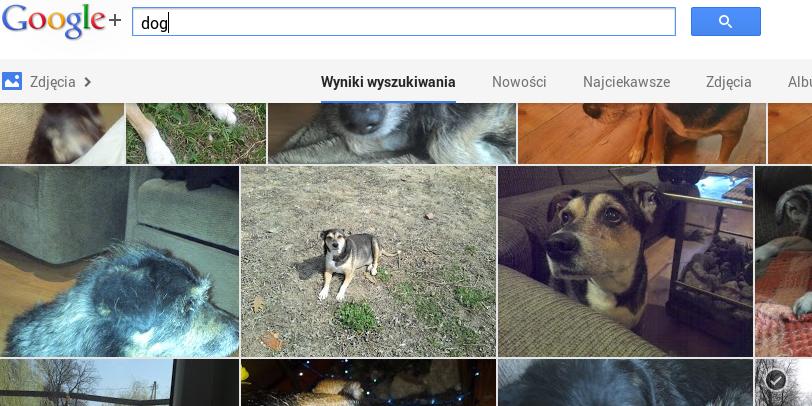 Dobra Google, to już jest nieco przerażające