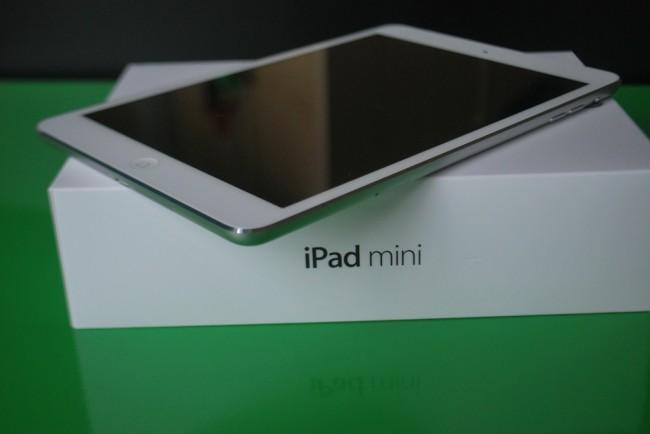 iPad_mini_r28