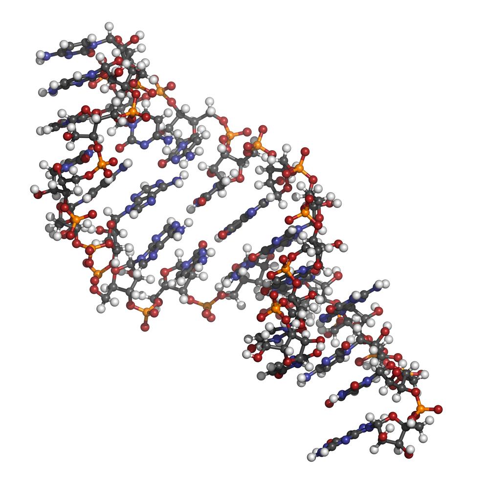 Gracze są lepsi w opracowywaniu cząsteczek RNA niż zaawansowane algorytmy komputerowe