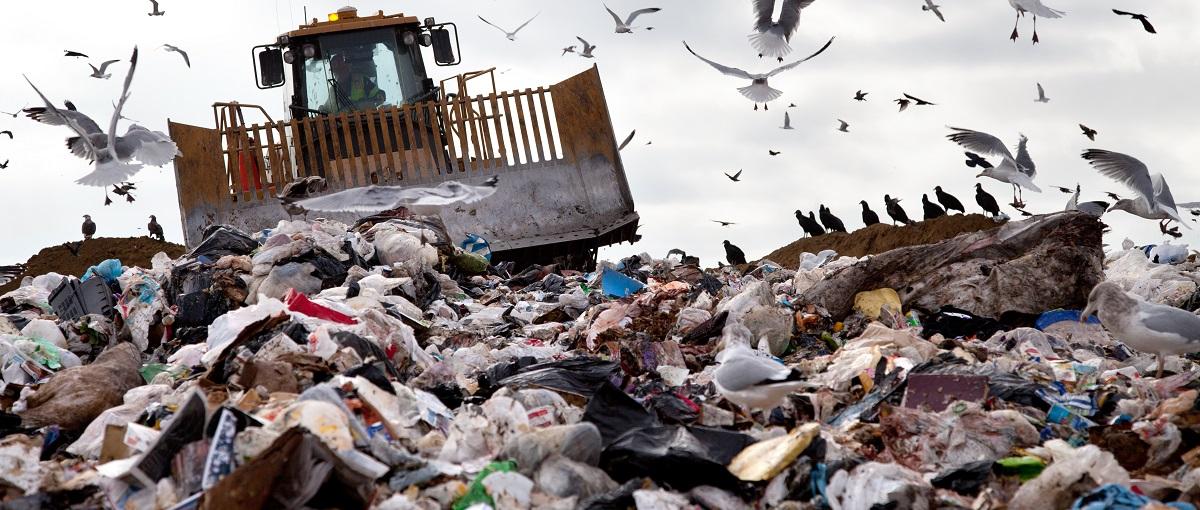 Google Play szuka sposobów na pozbycie się śmieciowych aplikacji. Oto pierwszy z nich