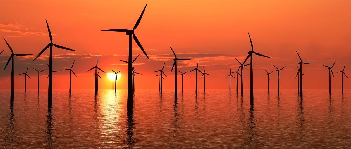 Wybrzeże pełne turbin wiatrowych robi wrażenie. Tak Australia będzie walczyć z brakami energii