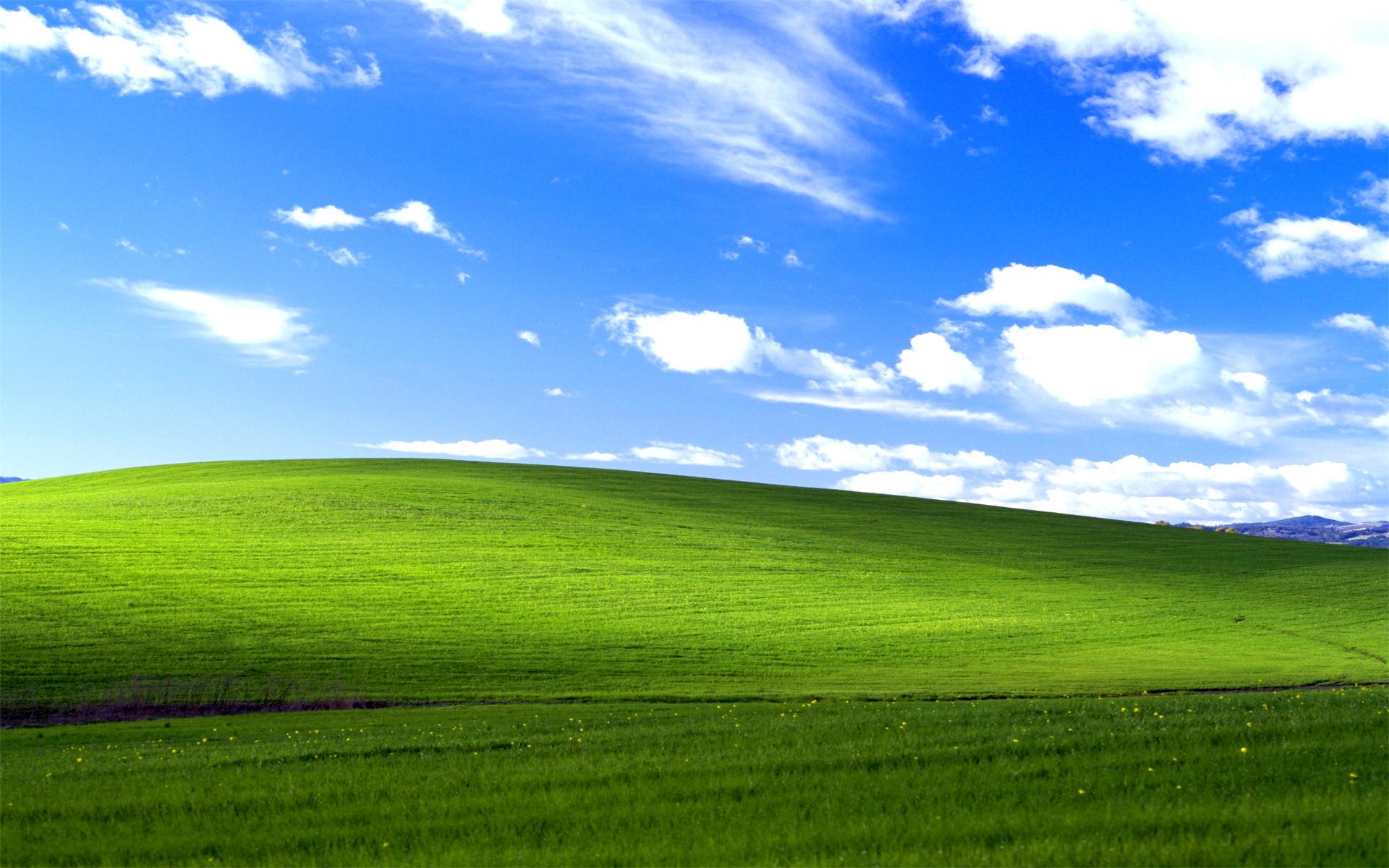 Smutne, ale prawdziwe – Windows XP jest martwy od roku, a nadal pozostaje popularniejszy od ósemki