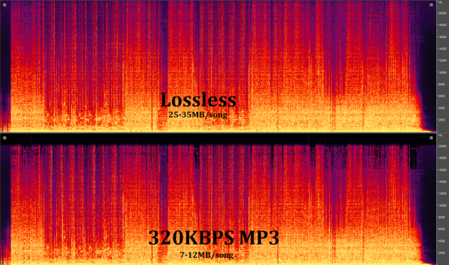 Understanding-the-Differences-Between-Lossy-And-Lossless-MP3-And-FLAC-Made-Easy