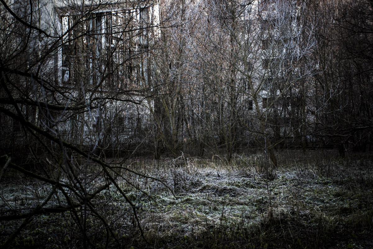 Grand-press-photo-2016 (10)
