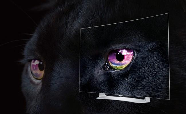 dlaczego OLED