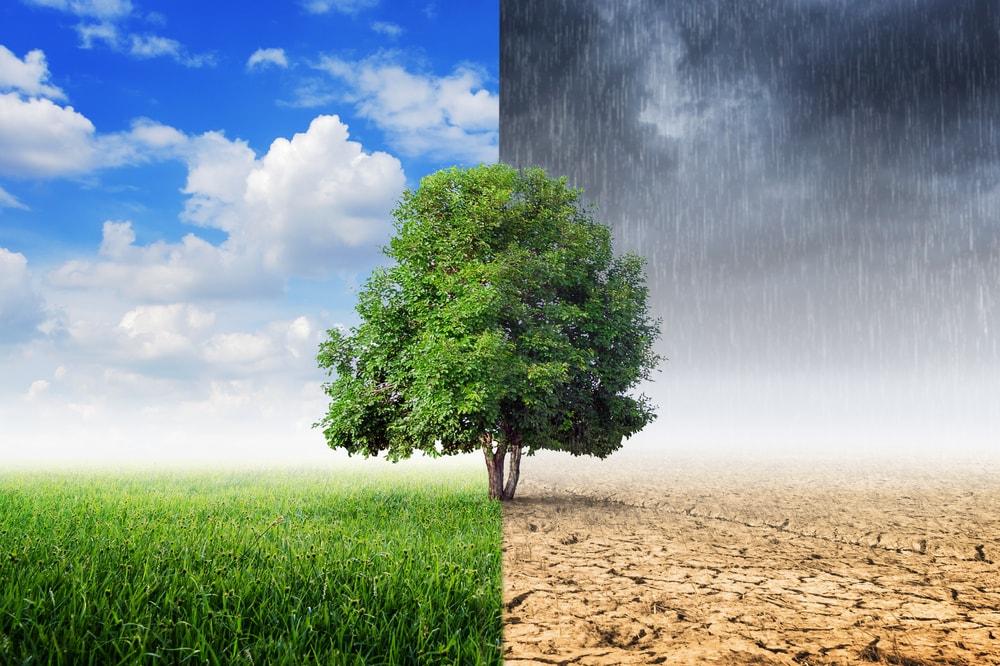 Globalna zmiana klimatu powinna być faktem nauczanym w szkołach. I kropka.