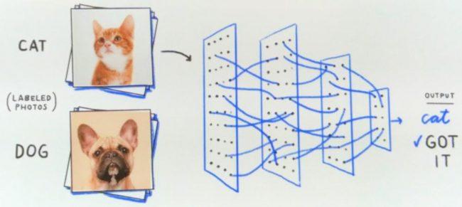 google uczenie maszynowe