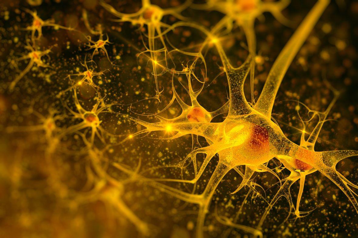 Przeprogramowane wirusy mogą okazać się lekiem na Parkinsona