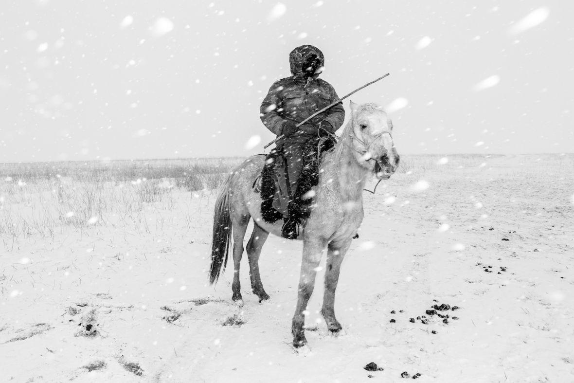 Oto najlepsze zdjęcia roku w największym konkursie fotograficznym świata – SWPA 2017