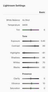 pixel peeper - strona do podglądu sposobu obróbki w Lightroomie