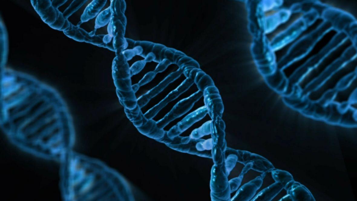 Jak zrobić sobie test genetyczny? Ja zrobiłem to tak