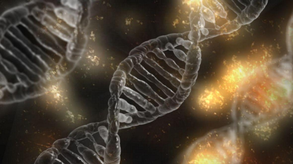 Postawiono pierwszy krok w stronę legalnej edycji DNA ludzkich embrionów