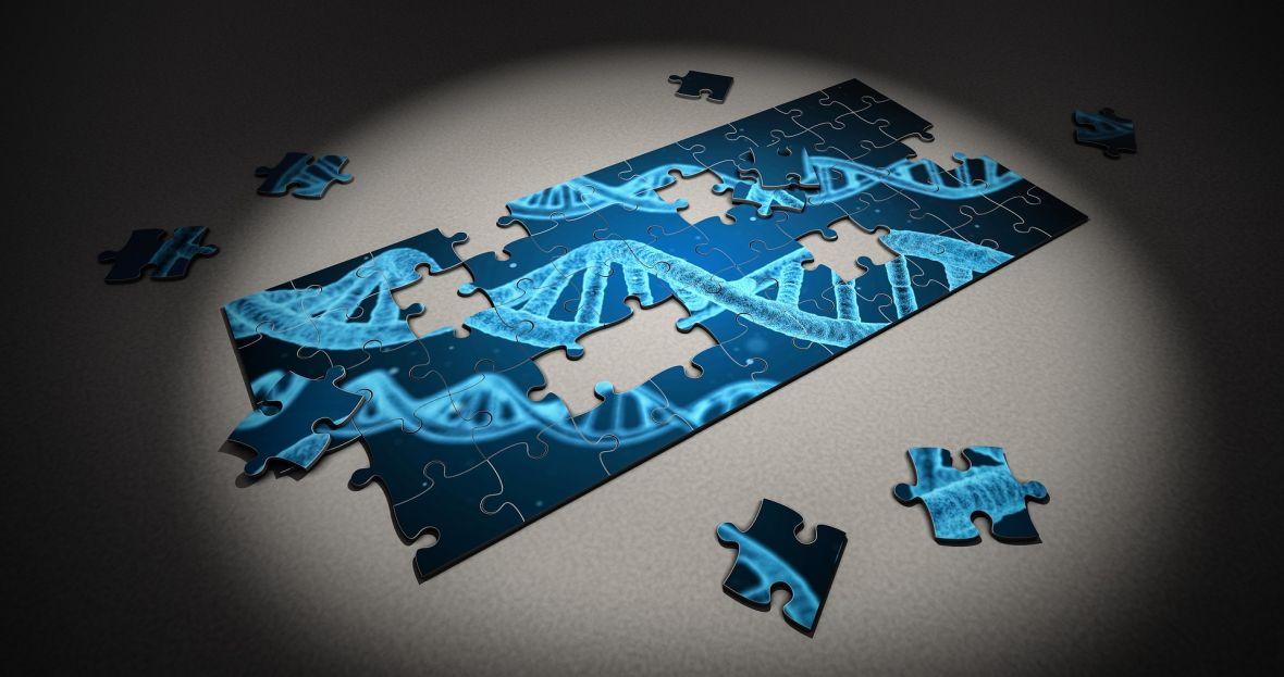 Kopalnia informacji i kilka pułapek, czyli czego dowiedziałem się ze swoich badań genetycznych