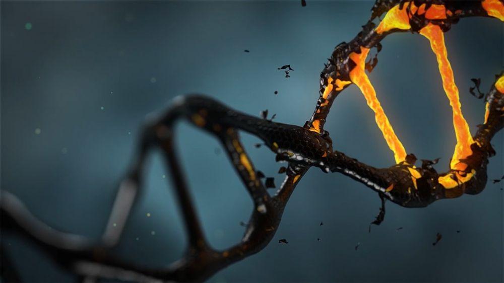 terapia genowa usa