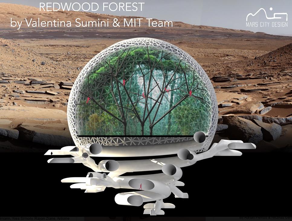 Redwood Forest pierwsza osada na Marsie