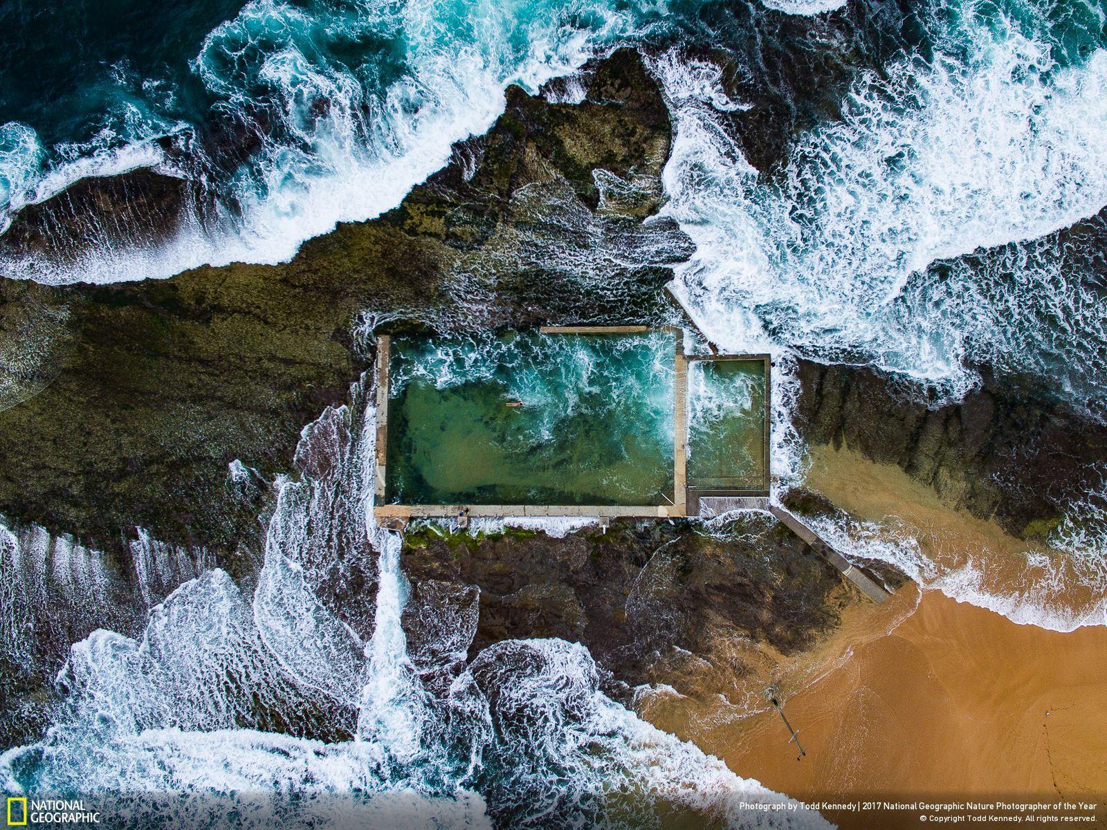 national geographic najlepsze zdjęcia roku 2017