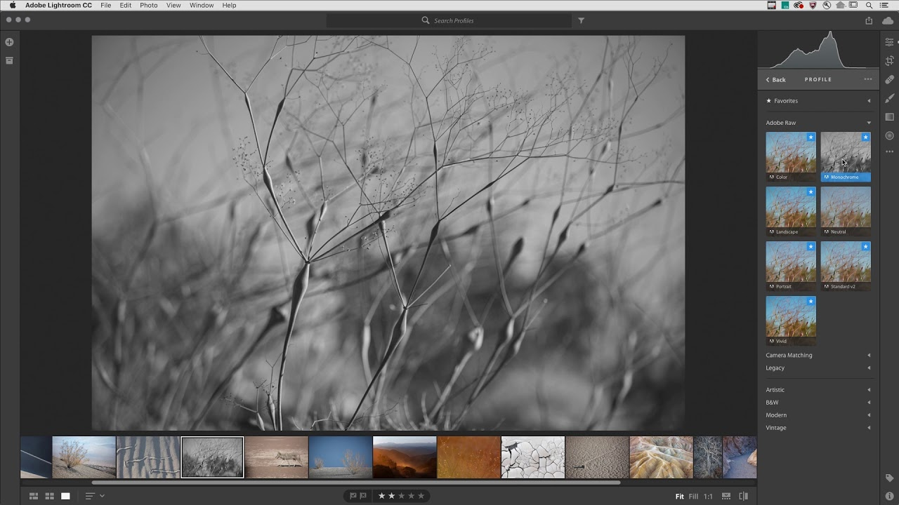 lightroom aktualizacja profile adobe raw
