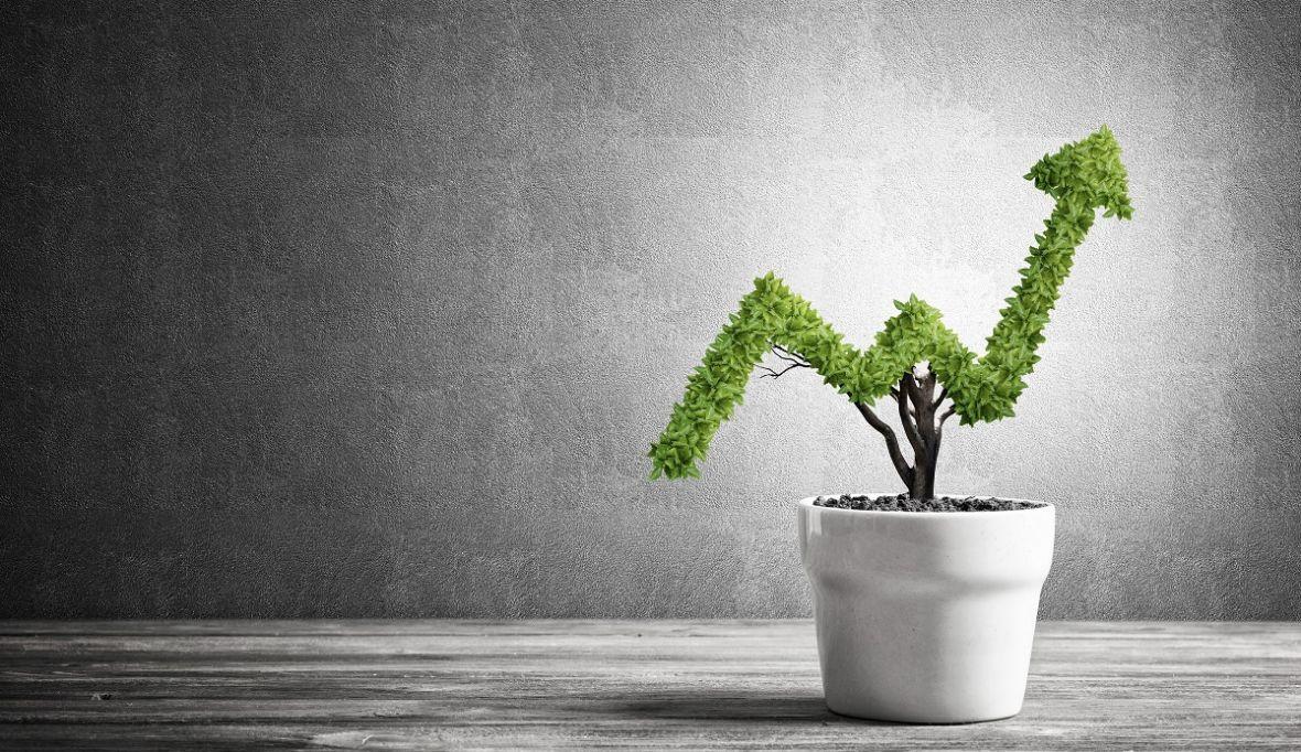 Przyszłość biznesu to ekologia. Te polskie firmy są na nią gotowe