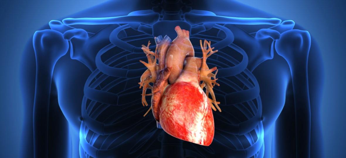NIewydolność serca zbiera śmiertelne żniwo. Wkrótce na pomoc przyjdą komórki macierzyste