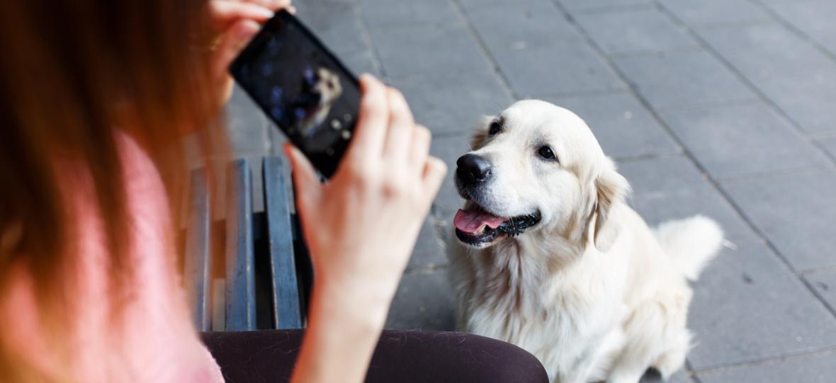 Poniedziałkowy poradnik zakupowy: smartfon, który nie wypadnie ci z dłoni w czasie spaceru z psem