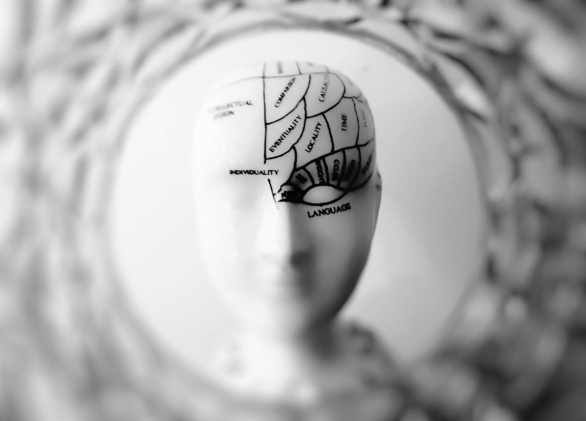 Dzięki komórkom macierzystym naukowcom udało się odmłodzić mózgi u myszy