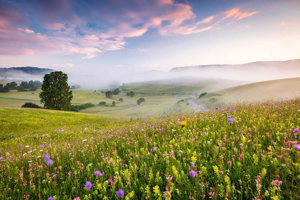 """Mount Rainier in the Mist"", fot. Robert Gibbons 