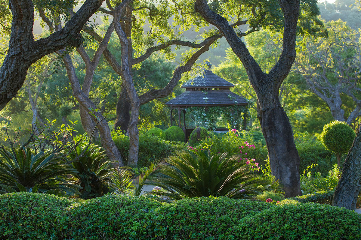 "Andaluzja, Hiszpania, fot. Gazebo Cádiz | 1. miejsce w kat. ""European Garden Photography Award"", IGPOTY."