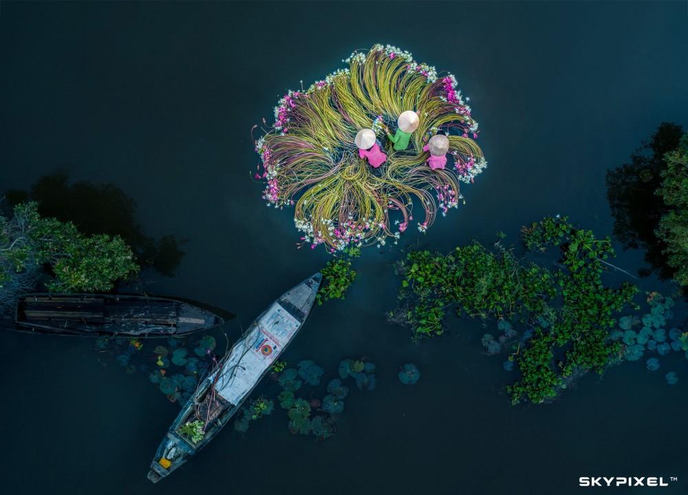 Fot. Khánh Phan / Zwycięzca kat. Nature / 2018 SkyPixel
