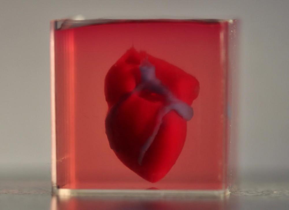 biodruk-unaczynione-serce-druk-3d-badania
