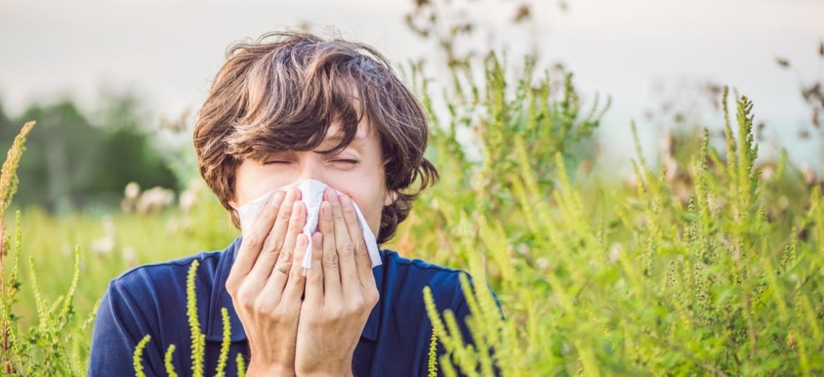 Alergicy, bracia i siostry w cieknącym nosie i czerwonych oczach, czy aplikacje dla alergików mają sens?