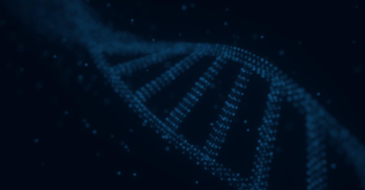 Jak to jest zarobić 2 mln zł w 8 dni? Rozmawiamy z Maciejem Aniserowiczem o projekcie DNA