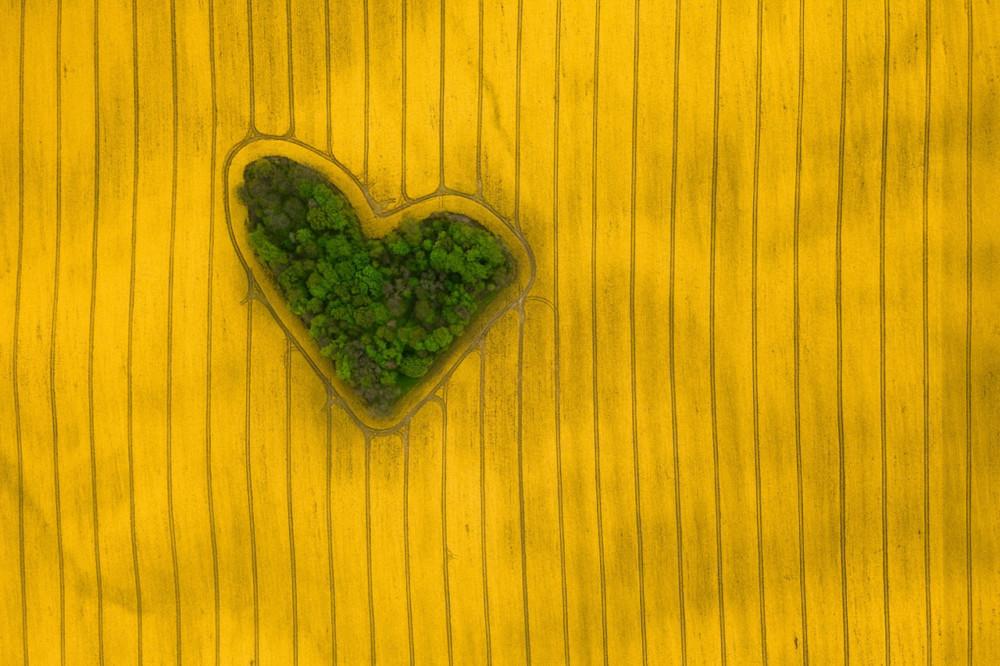 "Fot. Jeremiasz Gądek, ""Island of Love"""