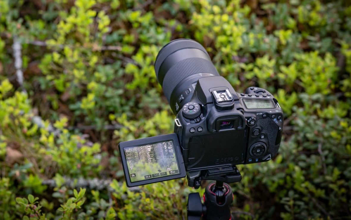 Canon EOS M6 Mark II i EOS 90D oficjalnie. Szybki maluch i lustrzanka wykrywająca oko