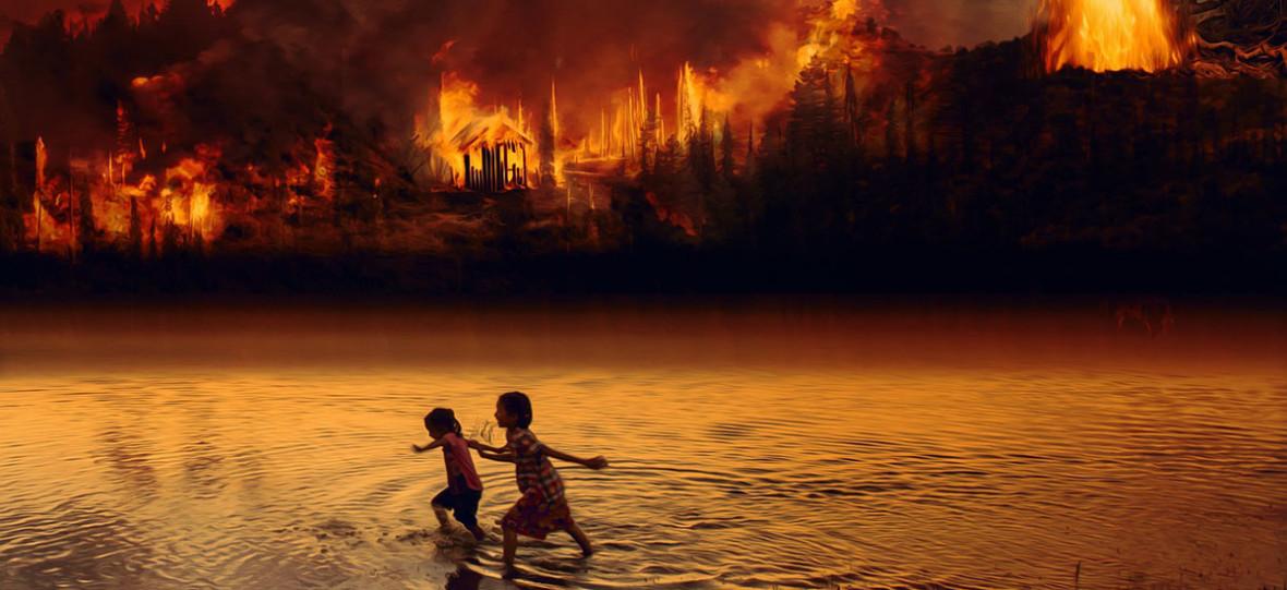 Zanim spalimy Cejrowskiego na stosie, przeczytajmy, co właściwie napisał o pożarach w Amazonii