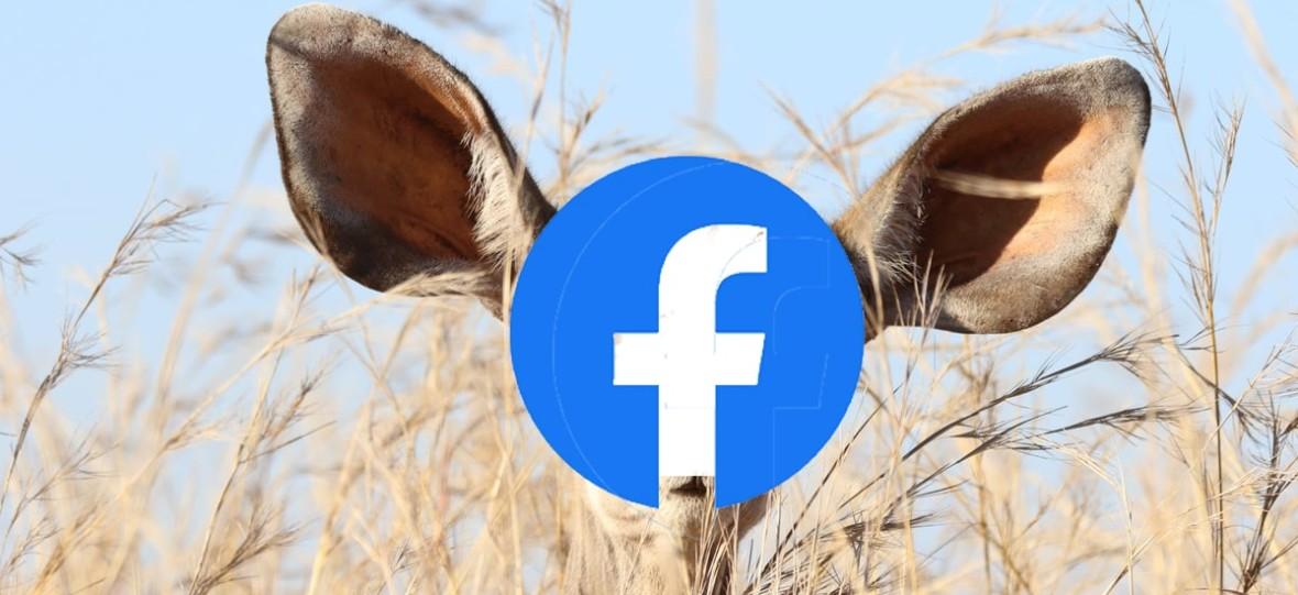 Facebook płaci ludziom za słuchanie i spisywanie twoich rozmów na Messengerze