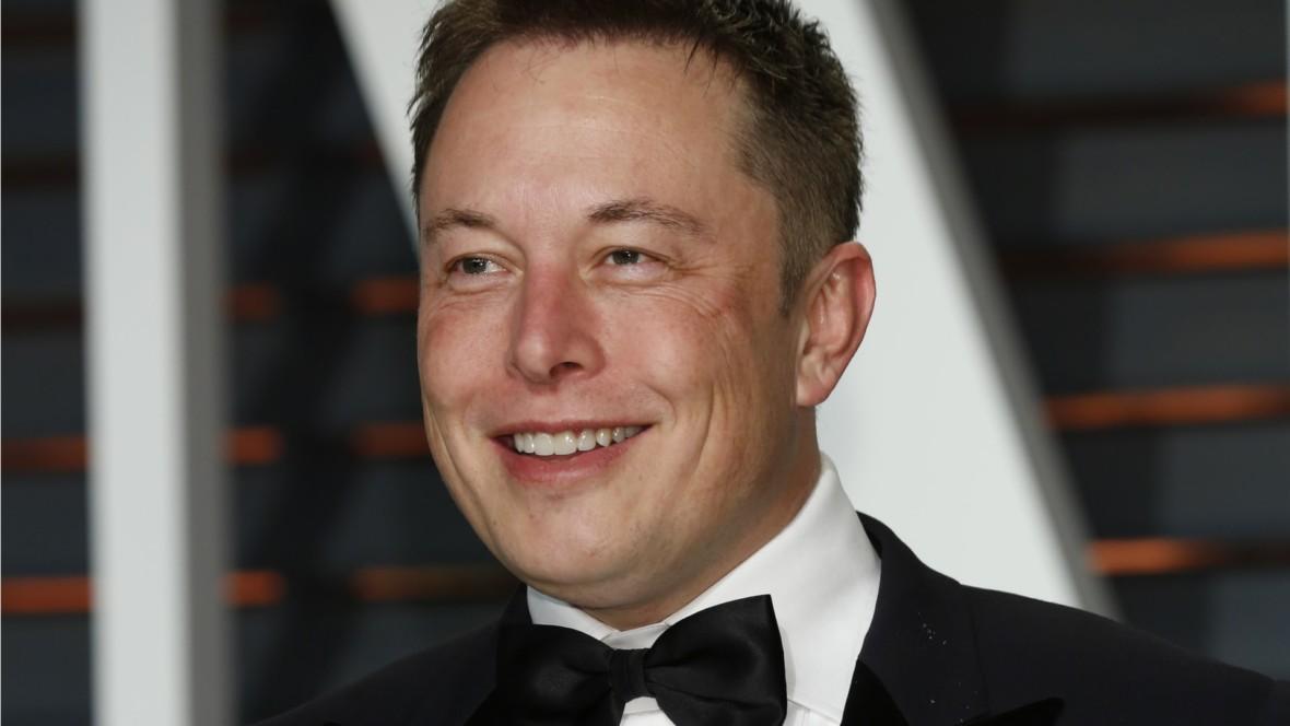 Leśnictwo podbija internet. Elon Musk zmienił imię na Treelon i ufundował milion drzew