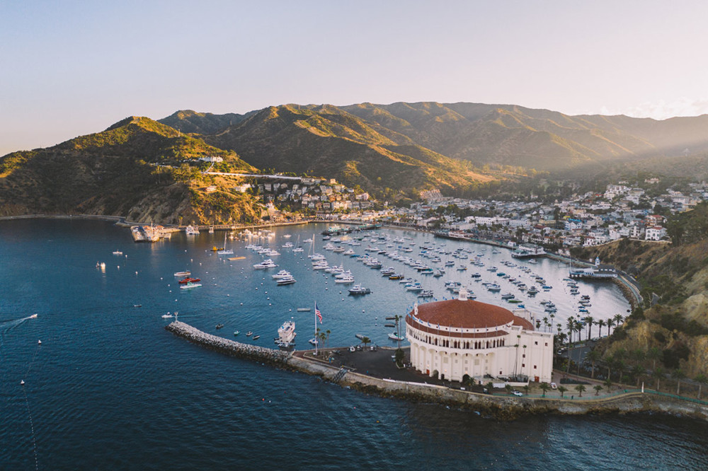 Wyspa Catalina, fot. Andrew Levitt