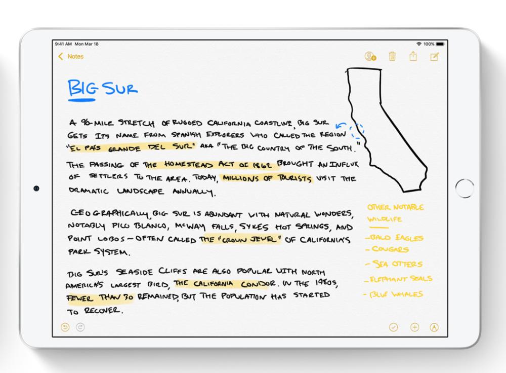Odręczne pismo na iPadzie