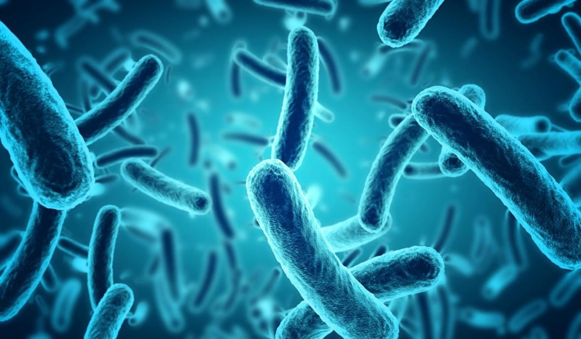 Naukowcy stworzyli bakterie, które żywią się dwutlenkiem węgla