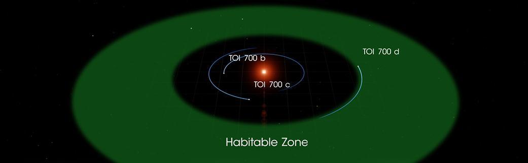 Orbita planety TOI 700 d
